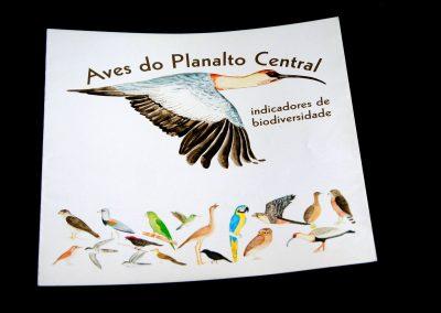 aves-cerrado1
