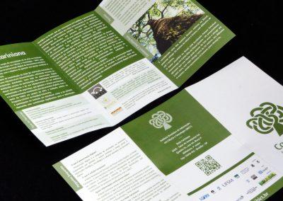carianana-folder2